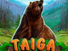 Игровой автомат Taiga